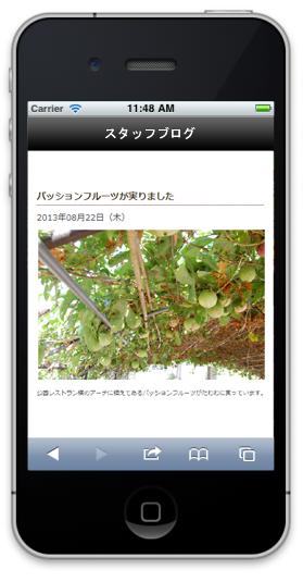 スタッフブログ詳細